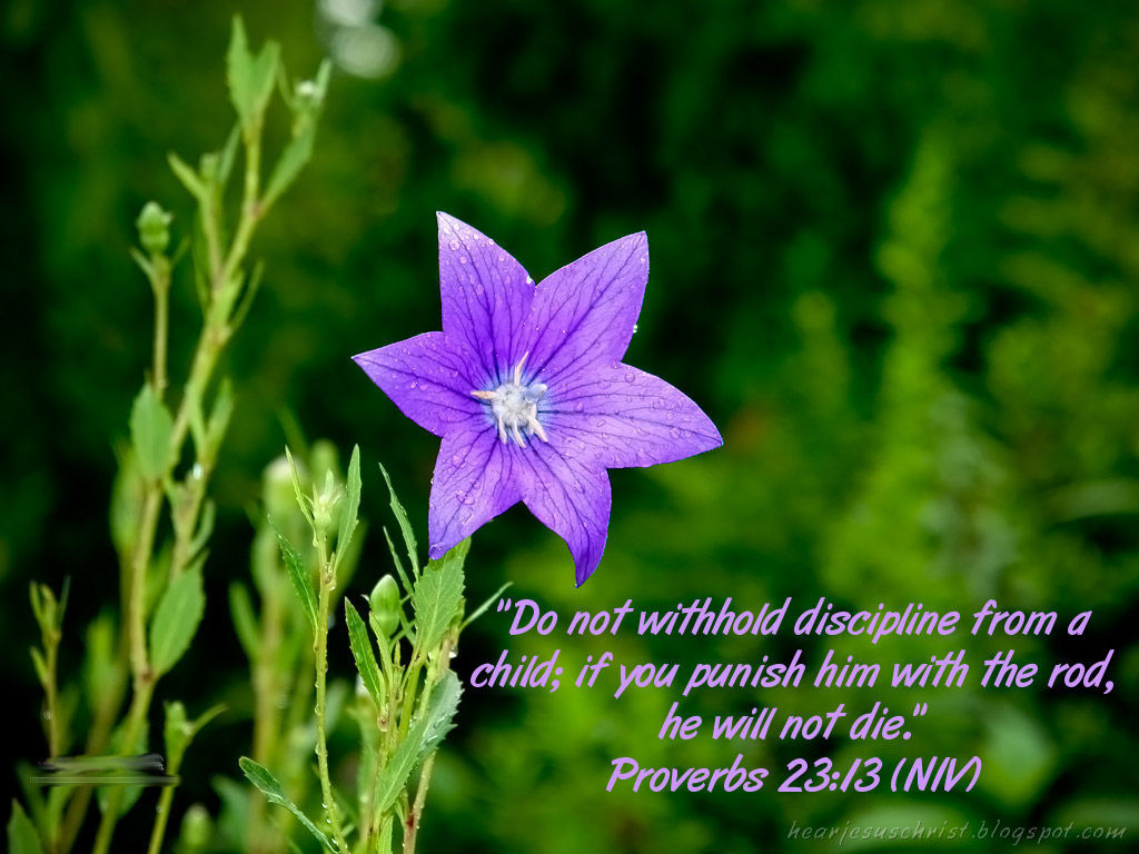 Proverbs 23:13 – Discipline From A Child christian wallpaper free download. Use on PC, Mac, Android, iPhone or any device you like.