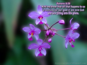 Romans 8:28 – Believe In God's Will Wallpaper