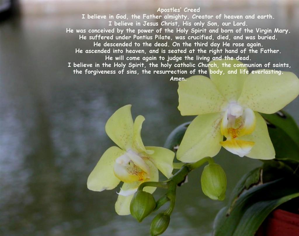 Apostles Creed christian wallpaper free download. Use on PC, Mac, Android, iPhone or any device you like.