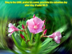 Psalm 96:2 – Sing to the Lord Wallpaper