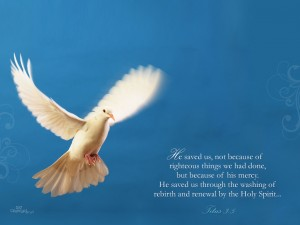 Titus 3:5 – His Mercy Wallpaper