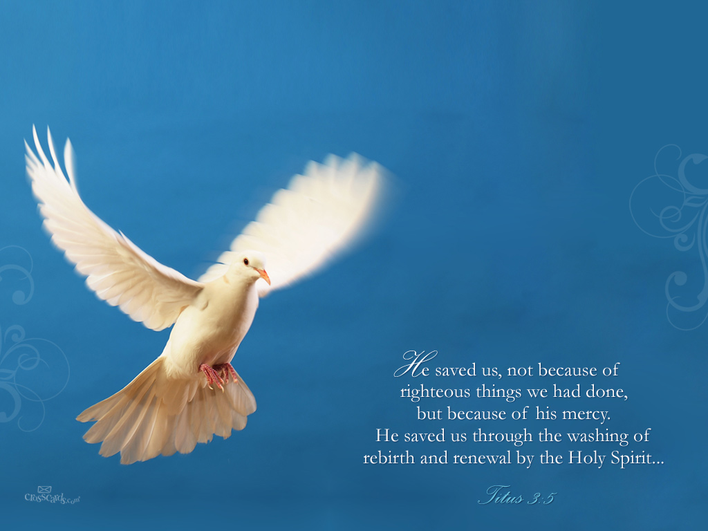 Titus 3:5 – His Mercy christian wallpaper free download. Use on PC, Mac, Android, iPhone or any device you like.