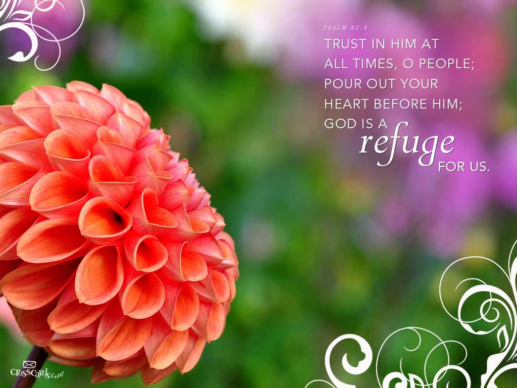 Psalm 62:8 – Refuge christian wallpaper free download. Use on PC, Mac, Android, iPhone or any device you like.