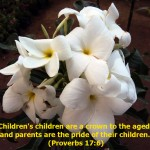 Proverbs 17:6 – Children's children Wallpaper Christian Background