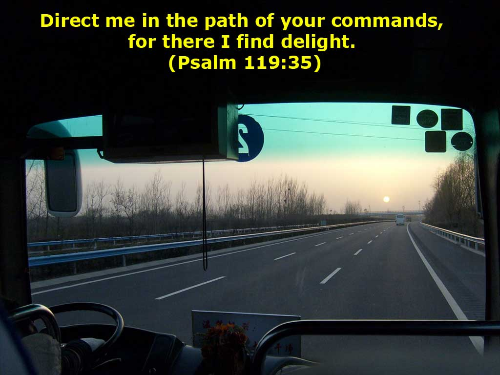 Psalm 119:35 – Direct my Path christian wallpaper free download. Use on PC, Mac, Android, iPhone or any device you like.