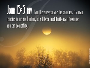John 15:5 – I am the vine Wallpaper