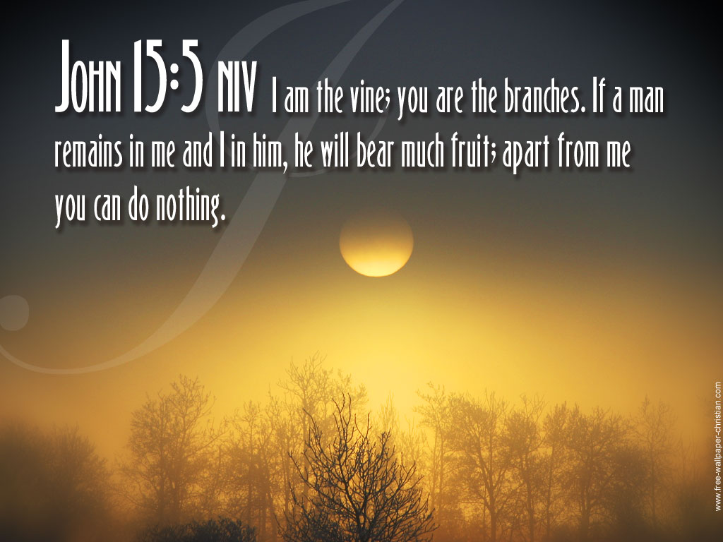 John 15:5 – I am the vine christian wallpaper free download. Use on PC, Mac, Android, iPhone or any device you like.