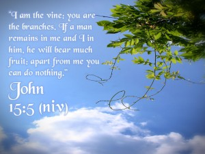 John 15:5 – Apart from me you can do nothing Wallpaper