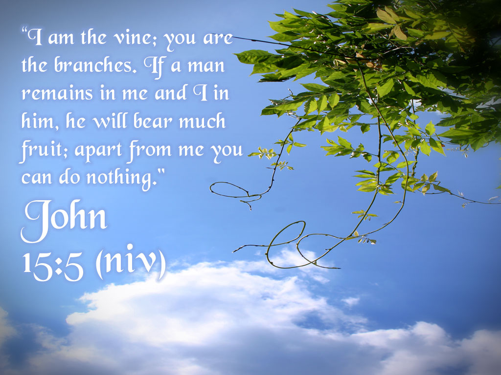john 155 apart from me you can do nothing wallpaper