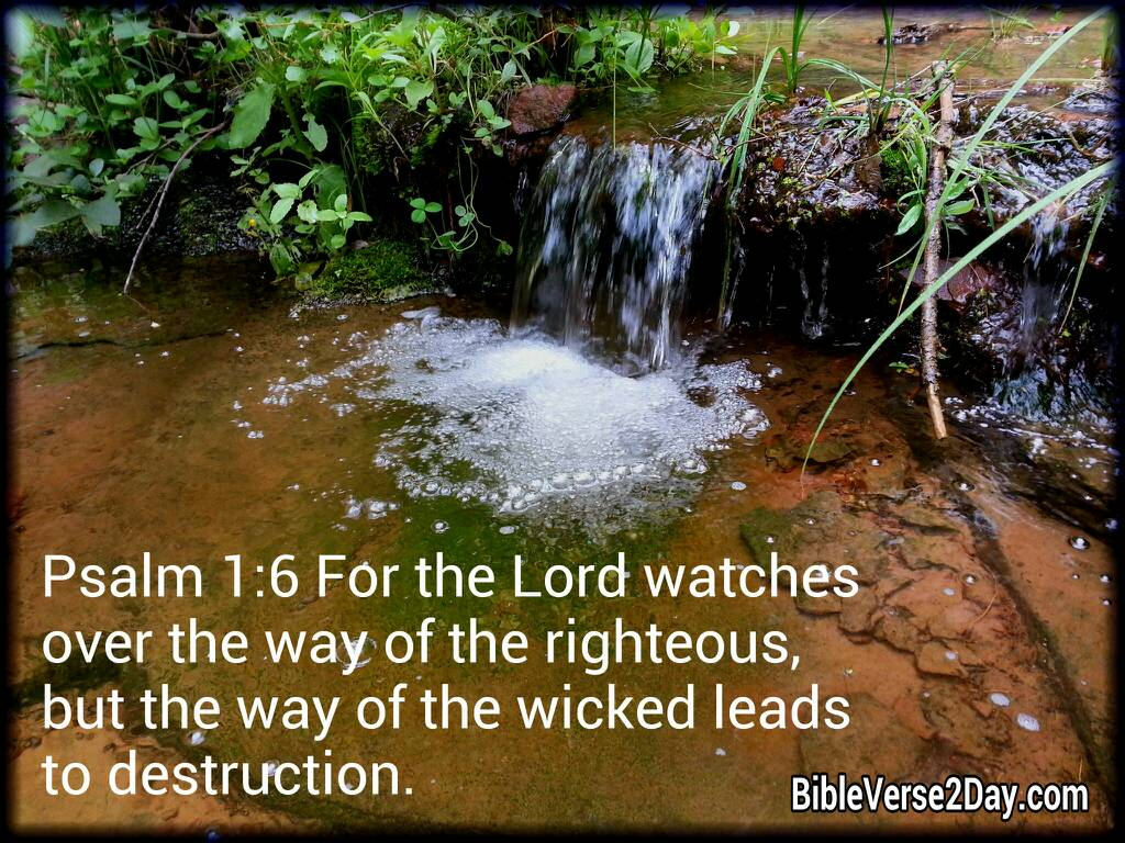 Psalm 1:6 – The Lord watches Over christian wallpaper free download. Use on PC, Mac, Android, iPhone or any device you like.