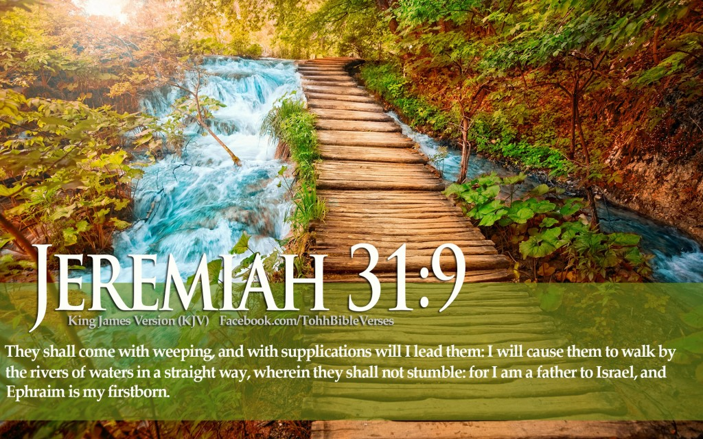 Jeremiah 31:9 – They shall not Stumble christian wallpaper free download. Use on PC, Mac, Android, iPhone or any device you like.