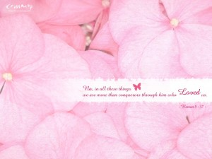 Romans 8:37 – Conquerors through Him Wallpaper