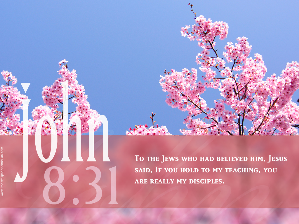 John 8:31 – His Disciples christian wallpaper free download. Use on PC, Mac, Android, iPhone or any device you like.