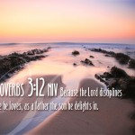Proverbs 3:12 – Discipline Wallpaper Christian Background