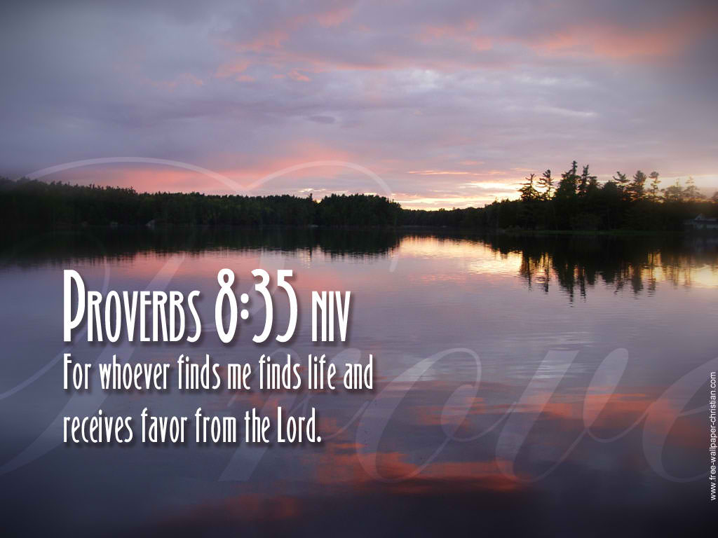 Proverbs 8:35 – Life and favor christian wallpaper free download. Use on PC, Mac, Android, iPhone or any device you like.