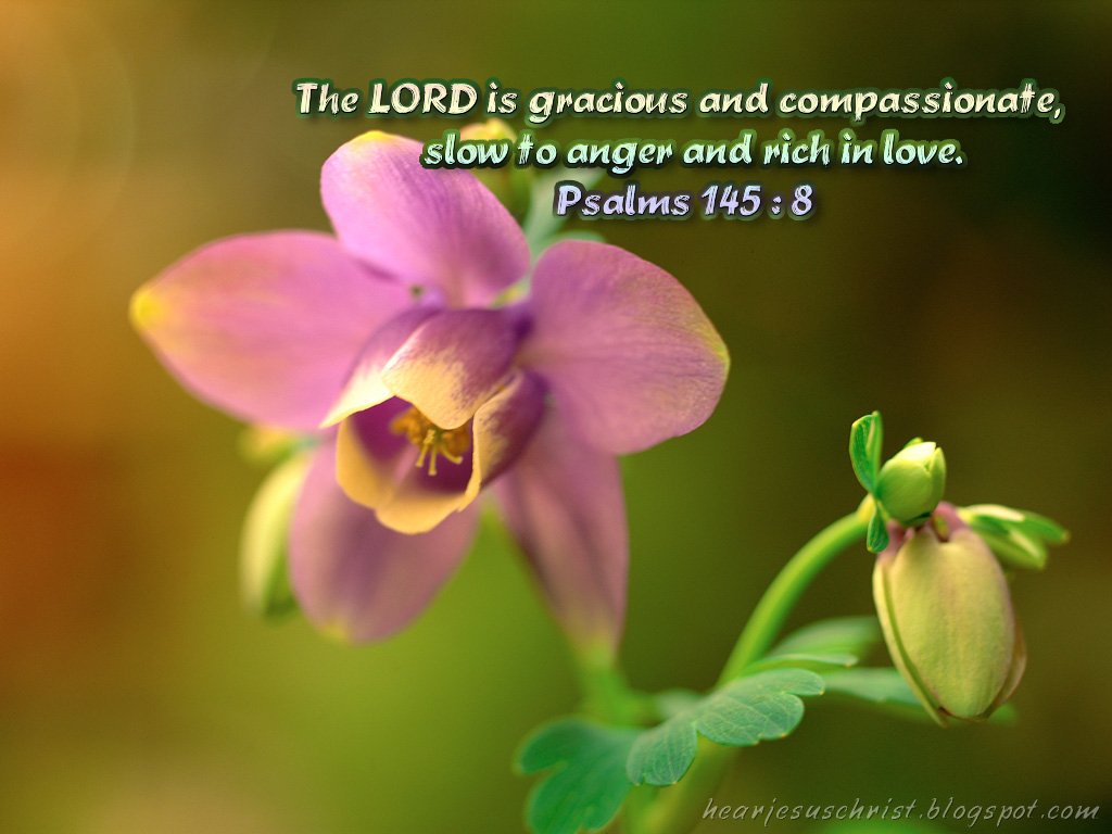 Psalm 145:8 – The Lord is gracious christian wallpaper free download. Use on PC, Mac, Android, iPhone or any device you like.