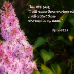 Psalm 91:14 – Trust Wallpaper Christian Background