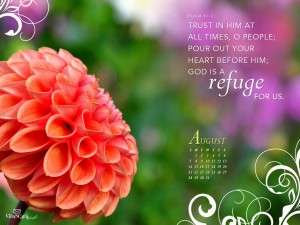 Psalm 62:8 – Trust in Him Wallpaper