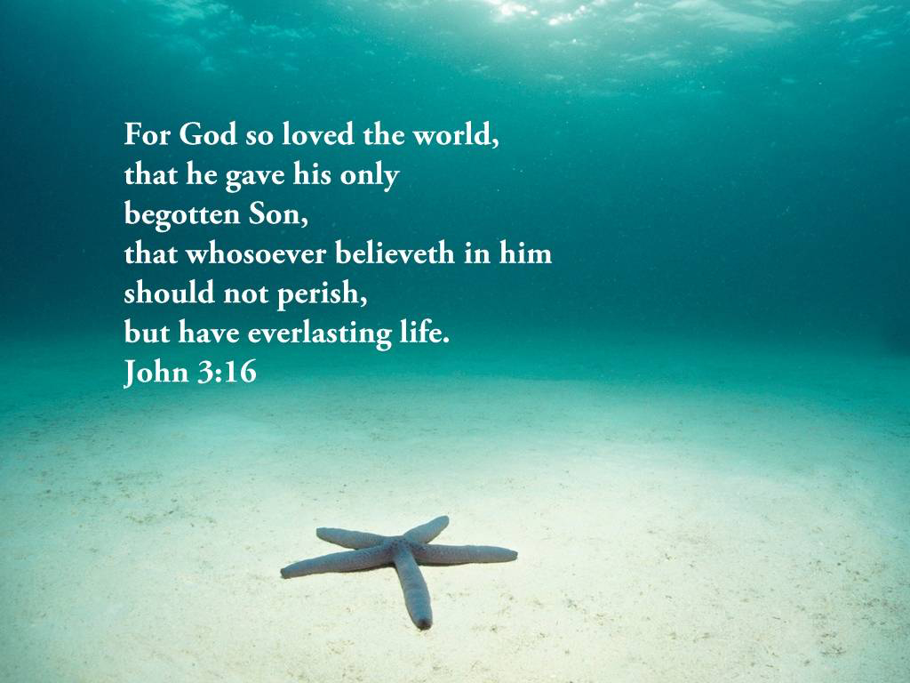 John 3:16 – God's Love christian wallpaper free download. Use on PC, Mac, Android, iPhone or any device you like.