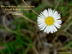 Proverbs 11:2 – Wisdom Wallpaper