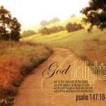 Psalm 147:10-11 – God delights Wallpaper Christian Background