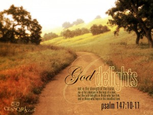 Psalm 147:10-11 – God delights Wallpaper
