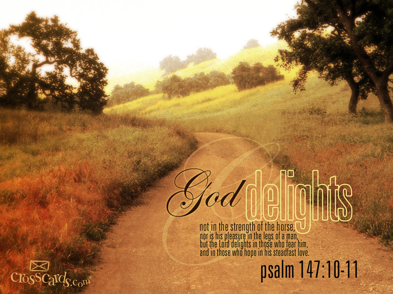 Psalm 147:10-11 – God delights christian wallpaper free download. Use on PC, Mac, Android, iPhone or any device you like.