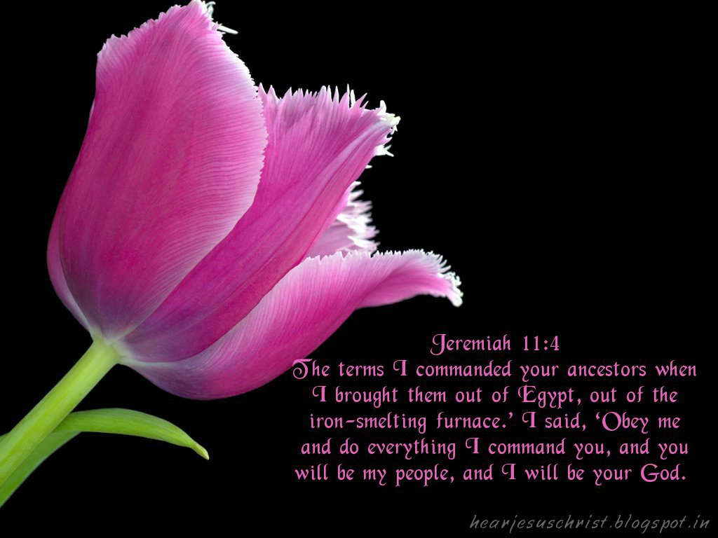 Jeremiah 11:4 – Obey Me christian wallpaper free download. Use on PC, Mac, Android, iPhone or any device you like.