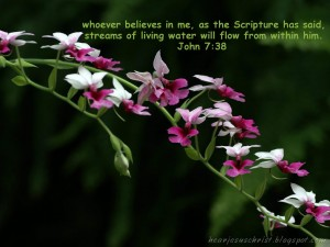 John 7:38 – Scripture Wallpaper