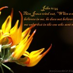 John 12:44 – Believe Wallpaper Christian Background