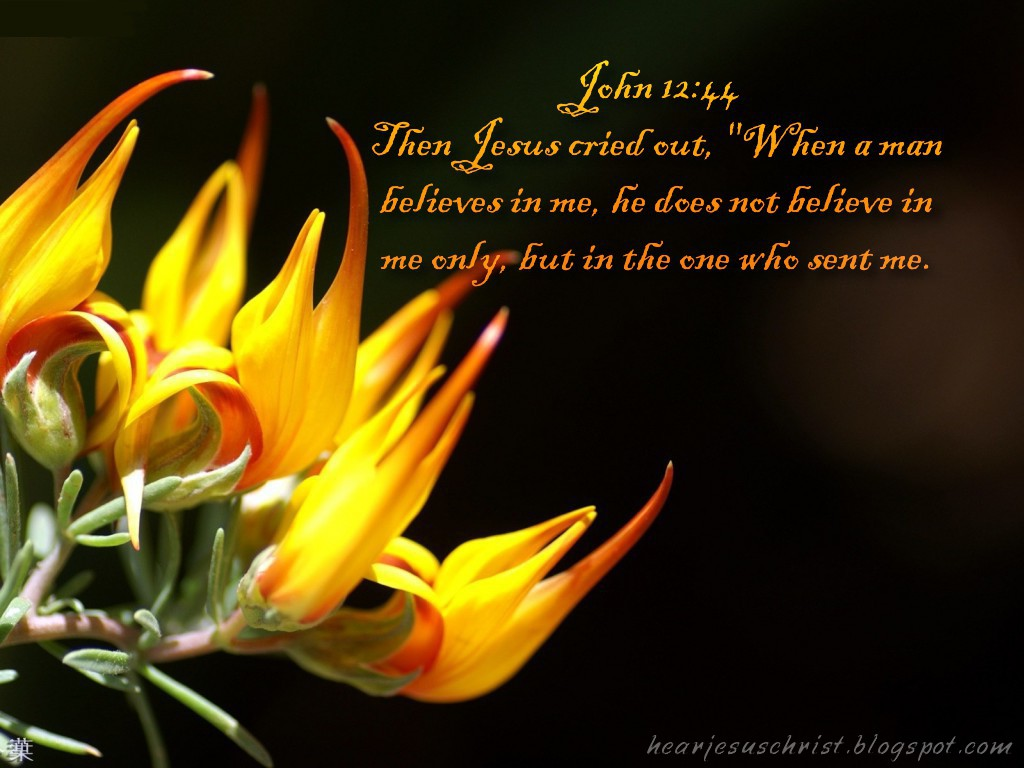 John 12:44 – Believe christian wallpaper free download. Use on PC, Mac, Android, iPhone or any device you like.