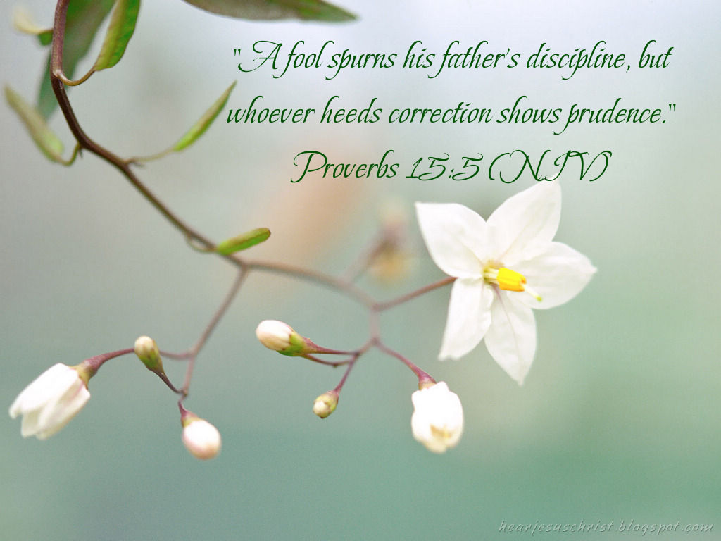Proverbs 15:5 – Father's Discipline christian wallpaper free download. Use on PC, Mac, Android, iPhone or any device you like.