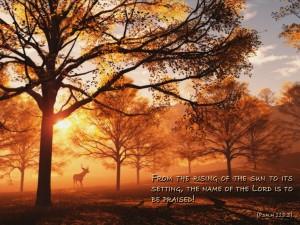 Psalm 113:3 – The Lord is to be praised Wallpaper