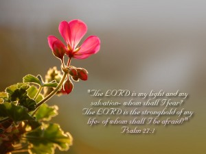 Psalm 27:1 – The stronghold of my Life Wallpaper