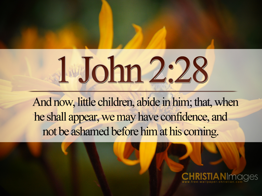 1 John 228 Christian Wallpaper Free Download Use On PC Mac