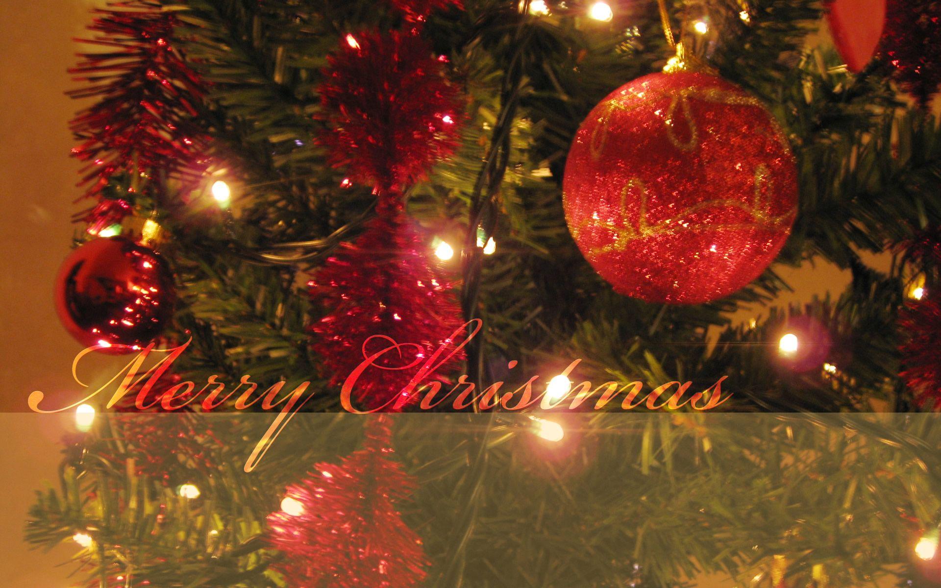 christmas tree - merry christmas wallpaper