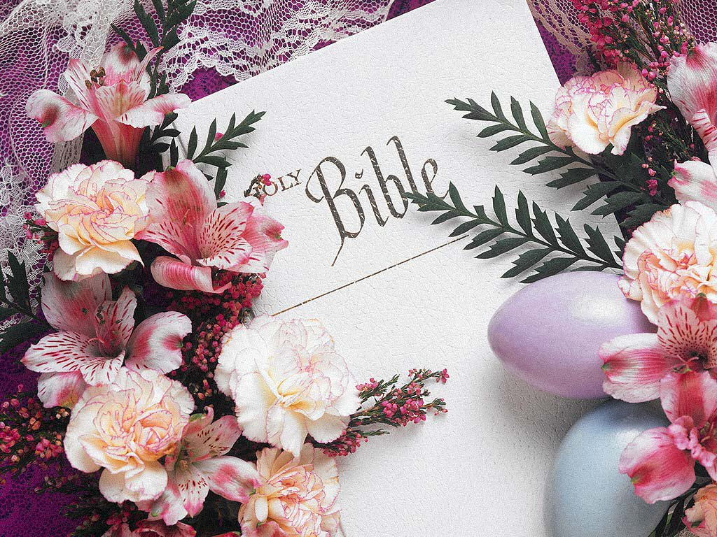 flower blossom wallpaper scripture - photo #10