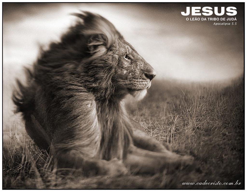 Jesus, Lion Wallpaper - Christian Wallpapers and Backgrounds