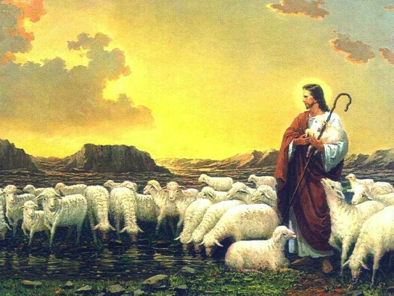 Iphone wallpaper full screen - Jesus The Pastor Wallpaper Christian Wallpapers And