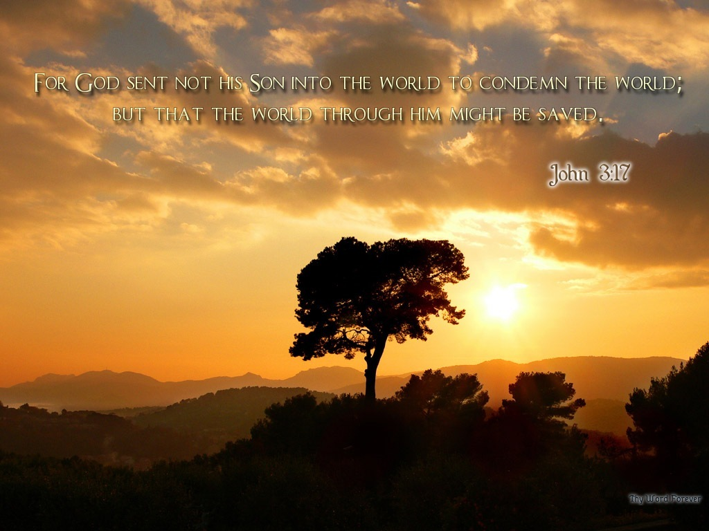 1 John 3 18 Dr J S Apothecary Shoppe