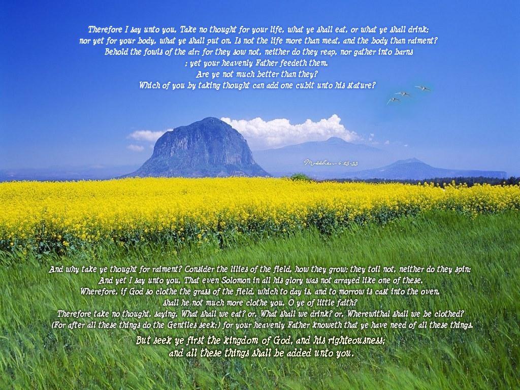 Matthew 6 25 33 Wallpaper Christian Wallpapers And