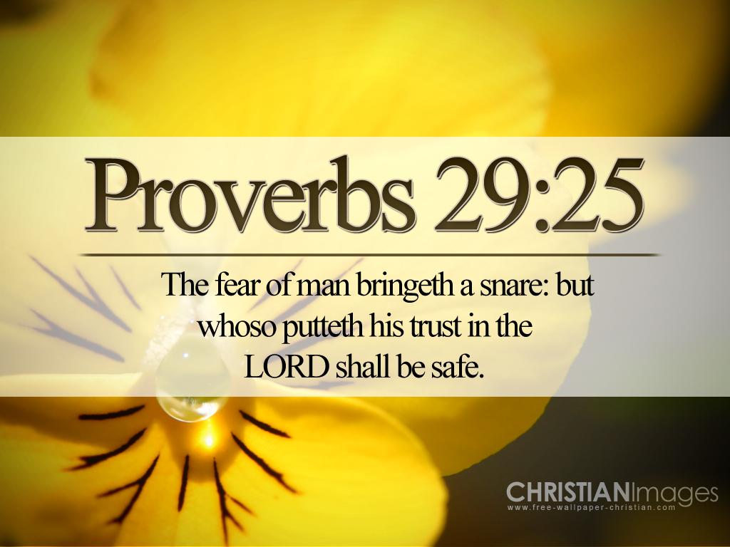 Proverbs 29:25 Papel de Parede Imagem