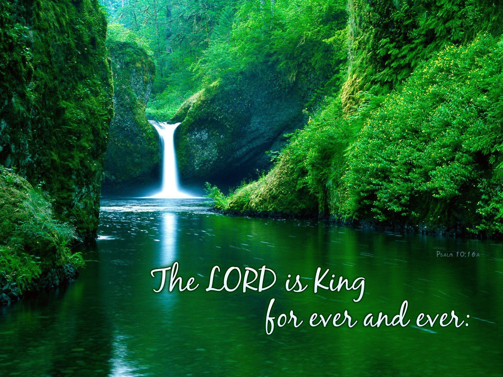 Image result for psalm 10